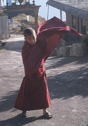 monkboy.jpg
